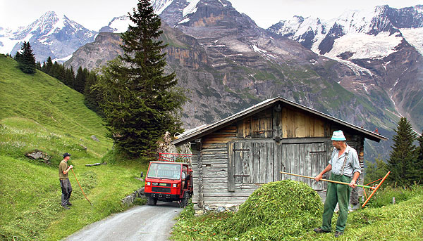 Agricultural images from the Swiss, Austrian, German and Italian Alps