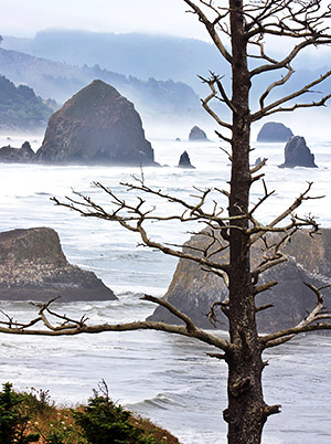 Pacific Northwest photo, Oregon and Washington, USA